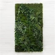 Фитостена с зелеными камнями (искусственная) Альсид