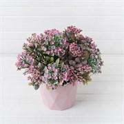 Эуфорбия розовая в декоративном кашпо (искусственная) Альсид