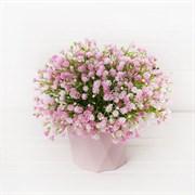 Гипсофила розовая в декоративном кашпо (искусственная) Альсид