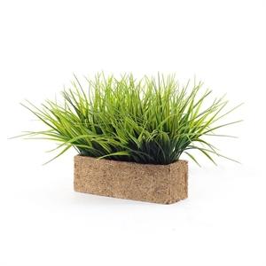 Трава короткая в кокосовом боксе 100*34*10 (Альсид)