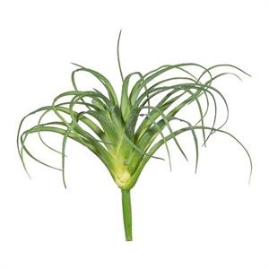 Тилландсия зелёная (искусственная) GL