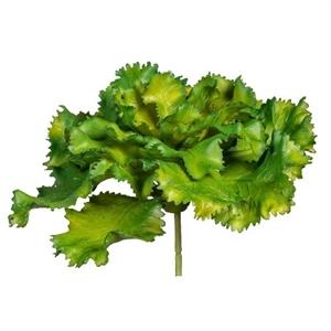 Эхеверия Шавиана зелёная (искусственная) GL
