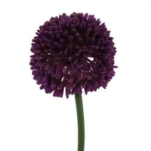 Аллиум тёмно-фиолетовый (искусственный) GL