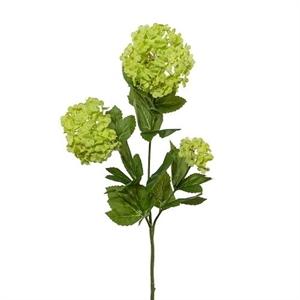 Ветка калина с цветами зелёная (искусственная) GL
