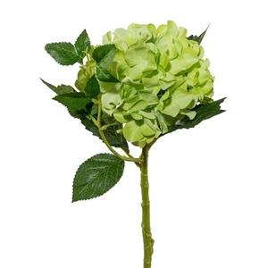 Гортензия зелёная (искусственная) GL