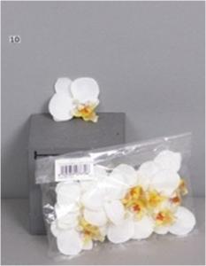 Орхидеи кремовые цветы 12 шт. (искусственные) GL