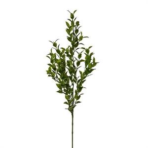 Рускус ветка H70 см зелёный (искусственная) GL