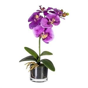 Фаленопсис фиолетовый в стеклянном кашпо (искусственный) GL