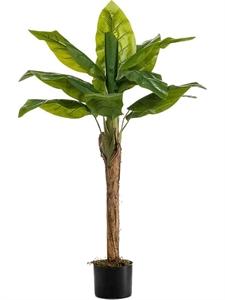 Банановая пальма (искусственная) Nieuwkoop Europe