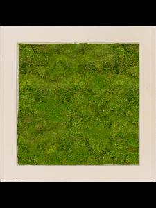Картина из мха polystone natural 100% flat moss