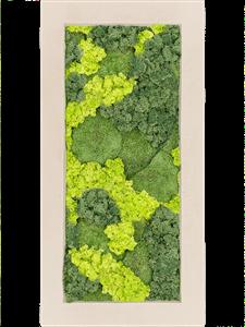 Картина из мха polystone natural 30% ball moss 70% reindeer moss (mix)