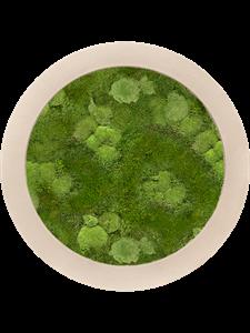 Картина из мха polystone natural 30% ball- and 70% flat moss
