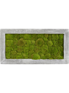Картина из мха polystone raw grey 100% ball moss