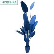 250/К/360(з.) Банановая пальма h250см(синяя) в интерьерном кашпо