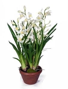 Орхидея Цимбидиум белая большая в кашпо (искусственная)
