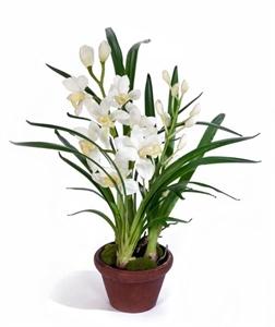 Орхидея Цимбидиум белая малая в кашпо (искусственная)