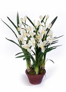Орхидея Цимбидиум белая средняя в кашпо (искусственная)