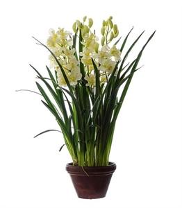 Орхидея Цимбидиум куст белый большой в кашпо (искусственная)